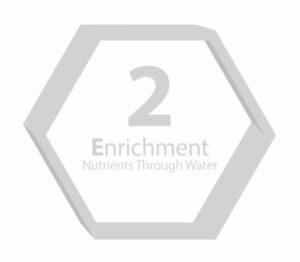 3E Step 2 Enrich