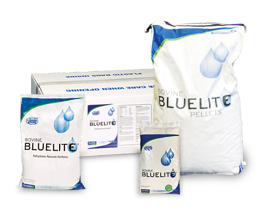 Bovine BlueLite product image
