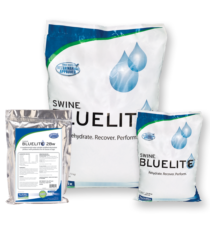 TechMix Swine BlueLite family image